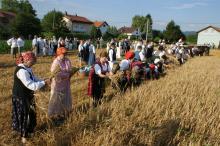 Žetvene svečanosti u Javorju